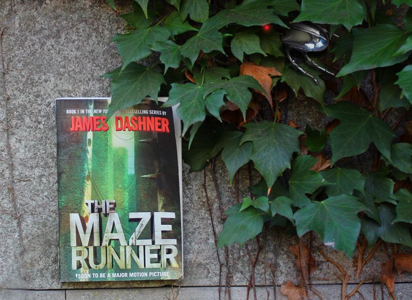 Bild von «The Maze Runner»