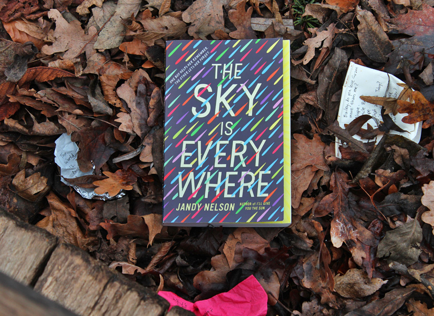 Galerie zum Buch «The Sky Is Everywhere»