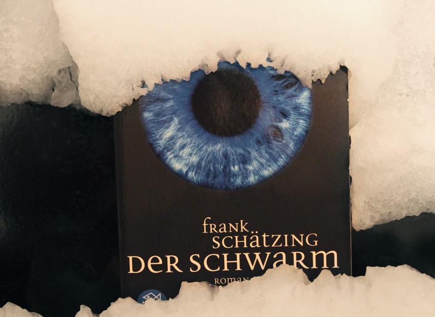 Galerie zum Buch «Der Schwarm»